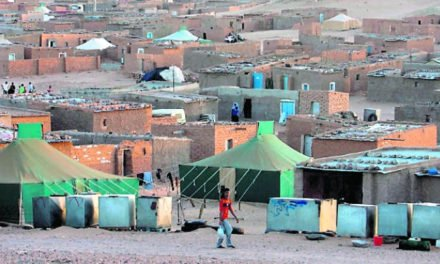 42 years of Saharawi resistance, Western Sahara's right to decide