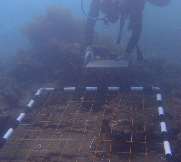 Underwater survey points to 300-year old ship wreck being of possibly British origins