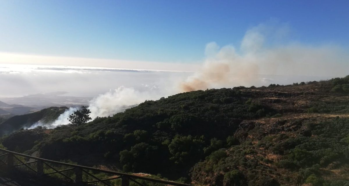 Mountain fire brought under control between Cazadores and La Pasadilla