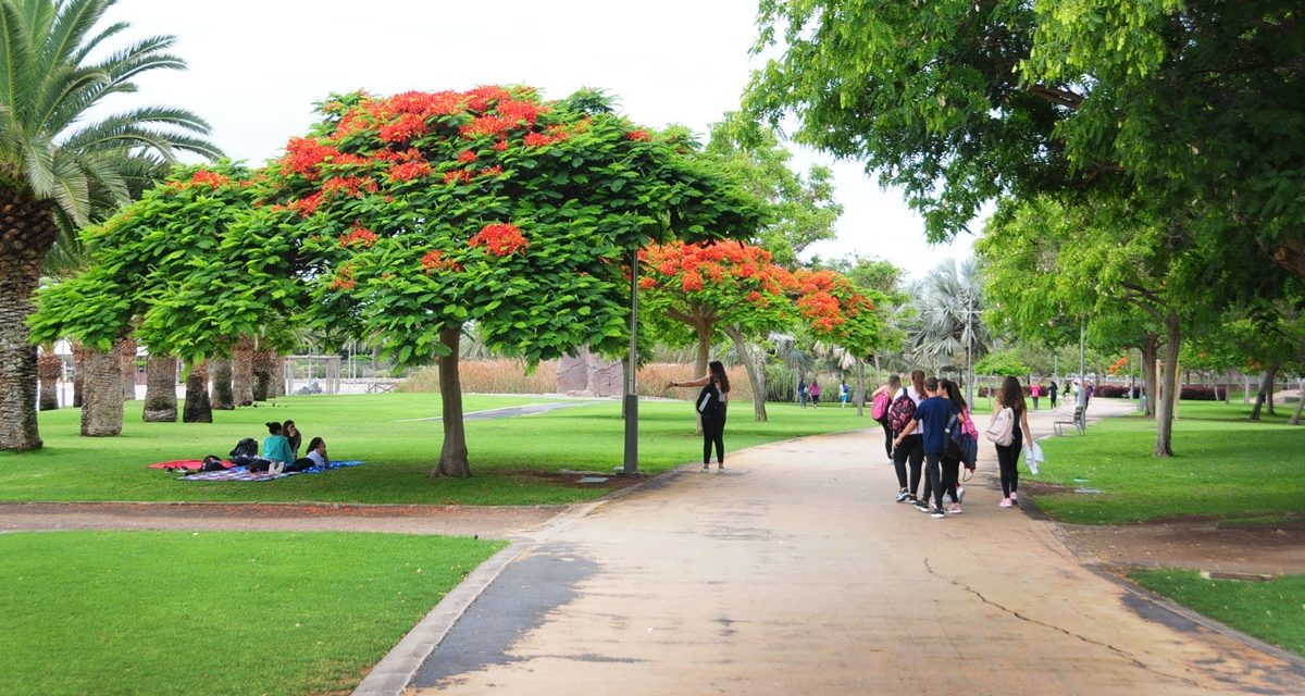 The Parque Sur Maspalomas closes completely between 10-16 September