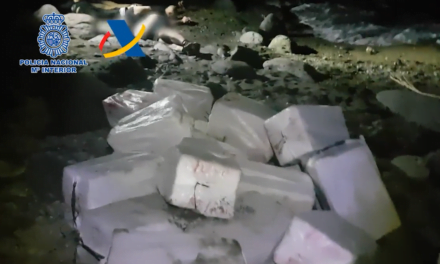 Mogán: €100m of smuggled cocaine seized, 17 members of gang caught red handed in Playa del Cura
