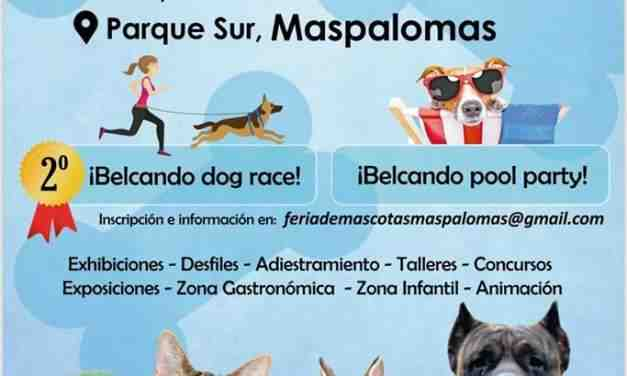 Maspalomas Parque Sur Pet Fair